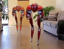 robot humanoide Cassei bípedo es un robot social destinado a desarrollar tecnología robótica
