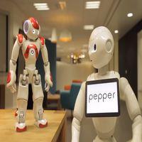 robot pepper y robot humanoide nao de-softbank robotics para la educación y empresa