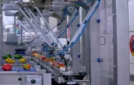 packaging robotizado de final de línea de embotellado y embalaje