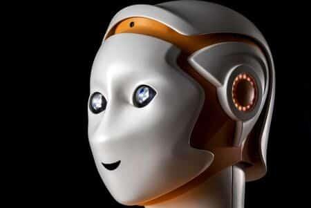 Robot-Ari-de-pal-robotics